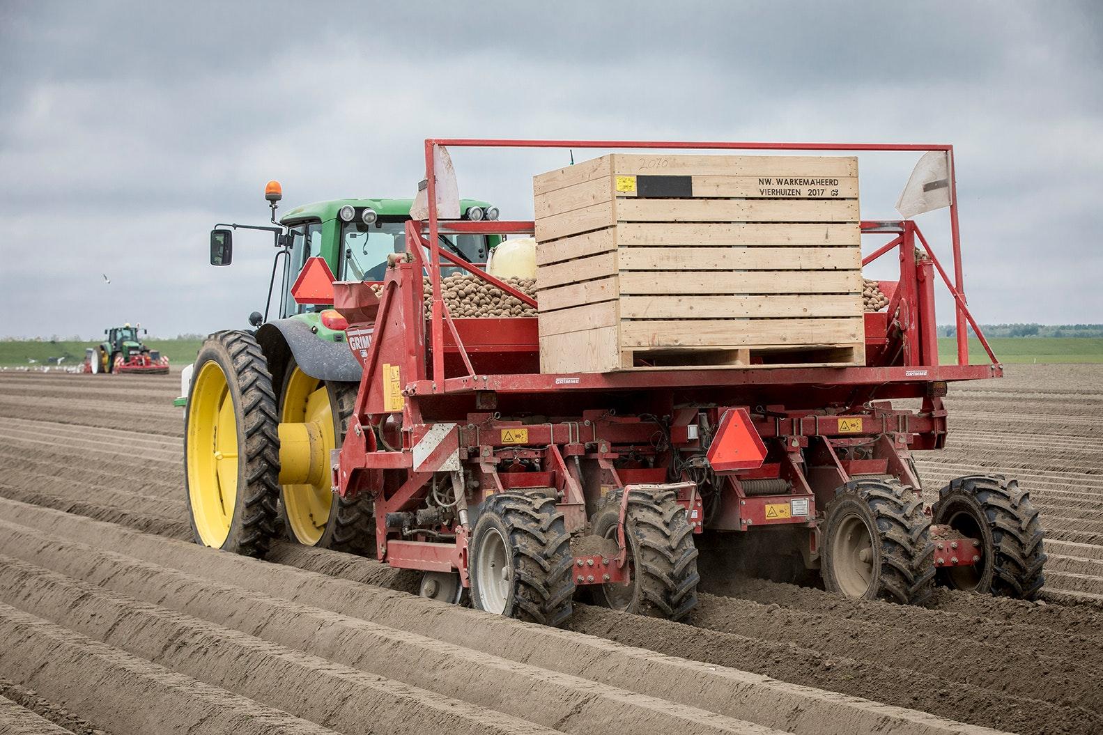 NPPL: variabel poten aardappelen 2018-2019